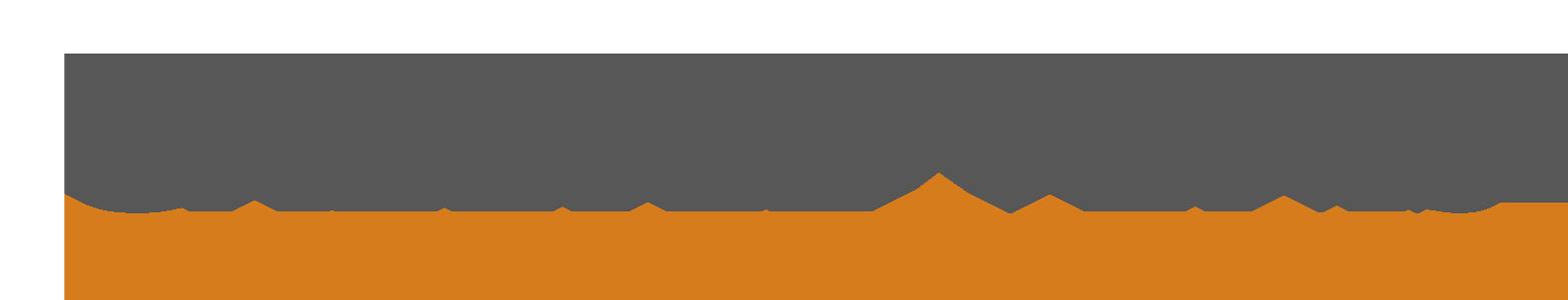 logo Galerie Venis